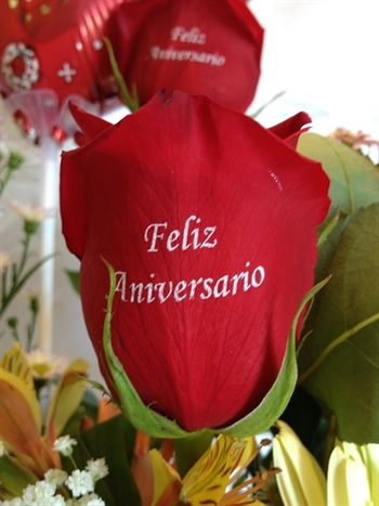 ct 073 frase básica feliz aniversario from rosas panama by karla bazán